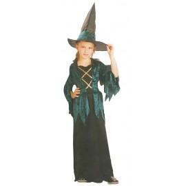 Disfraz Bruja Verde