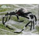 Araña de Broma de 50 cm
